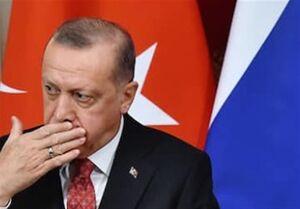 اردوغان از حساسیتها پیرامون شعر قرائتشده مطلع نبوده است