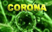مقابله با ویروس کرونا با استفاده از سلولهای بنیادی خون بند ناف